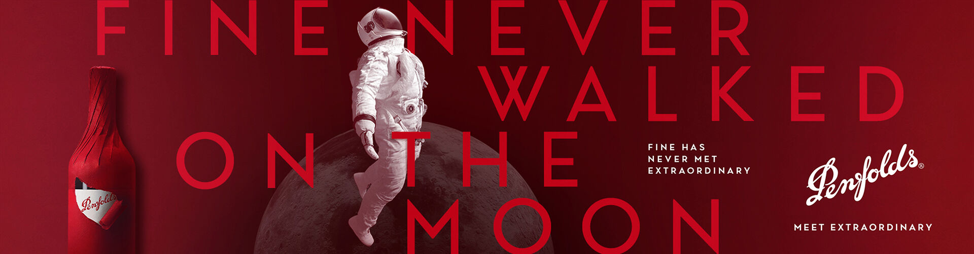 Fine Never Walked on the Moon banner